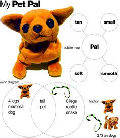 School essays for children: My Pet Dog